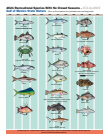 Florida fish open year round